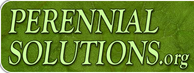 Perennial Solutions