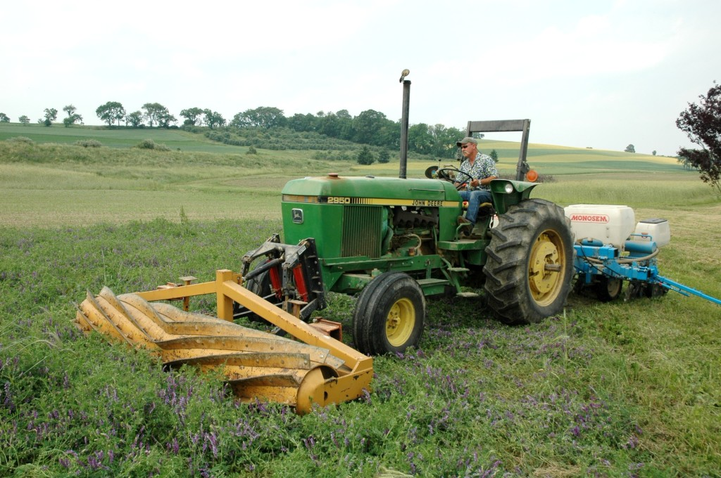 Organic no-till system developed by Rodale Institute. Image courtesy Rodale Institute..